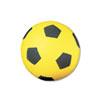 Champion Sport Champion Sports Coated Foam Sport Ball CSI SFC