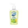 Instant Gel Sanitizers Pump Bottles: Dial® Scented Antibacterial Hand Sanitizer