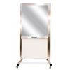 DiaMedical USA SimScreen Standard Simulation Panel - Portable Two Way Mirror for Observation DIA SC031101