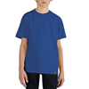Dickies Boys Short Sleeve Performance Tee Shirts DKI KS400-RB-S
