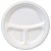 Dixie Dixie EcoSmart™ Molded Fiber Plates DXE ES9PCOMP