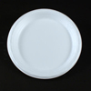 Dispoz-o Products Inc Enviroware™ Foam Dinnerware DZO GFP10