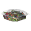 plastic containers: Eco-Products® Clear Clamshell Hinged Food Containers