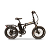 EWheels EW-Folding Electric Bicycle EWH-EWBAM-FOLDING-BLK
