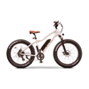 EWheels EW-NOMAD Electric Bicycle EWH-EWBAM-NOMAD-WHT