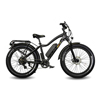 EWheels (BAM EW-Supreme) Electric Bike EWHEWBAM-SUPREME-BLK