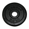 Rehabilitation: Fabrication Enterprises - Iron Disc Weight Plate - 2.5 lb