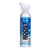 Fabrication Enterprises Boost Oxygen, Peppermint, Large (10-Liter), Case of 6 FNT 11-2221-6