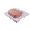 Fabrication Enterprises SONOtrain™ Gallbladder model FNT 12-4816