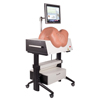 Fabrication Enterprises SIMone™ - Birthing Simulator FNT 12-4837