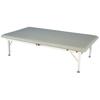 Fabrication Enterprises Armedica Treatment Table - Motorized Bariatric Hi-Lo, 2 Section, Bo-Bath 40 wide FNT 15-1704