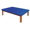 Clean and Green: Fabrication Enterprises - Mat Platform Table 4 1/2 x 6 ft. Dark Blue