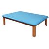 Clean and Green: Fabrication Enterprises - Mat Platform Table 4 1/2 x 6 ft. Light Blue
