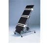 Fabrication Enterprises Electric Tilt Table, 78L x 28W x 32H, Black, 220V, Crated FNT 15-3042B