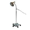 Fabrication Enterprises Standard Infra-Red Ceramic 250 Watt Lamp, Mobile Base FNT 18-1165