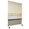 Fabrication Enterprises Glassless Mirror, Mobile Caster Base, Vertical, 36 W X 96 H FNT 19-1017