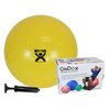 "IV Supplies Pump Sets: Fabrication Enterprises - Cando® Inflatable Exercise Ball - Economy Set - Yellow - 18"" (45 Cm) Ball, Pump, Retail Box"