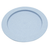 Fabrication Enterprises Inner Lip Plate, Plastic, Blue , 9 FNT 62-0110