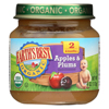 Earth's Best Organic Apples and Plums Baby Food - Stage 2 - Case of 12 - 4 oz. HGR 0121178