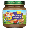 Earth's Best Organic Apples and Blueberries Baby Food - Stage 2 - Case of 12 - 4 oz. HGR 0121798