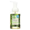 CleanWell Natural Antibacterial Foaming Handsoap - Spearmint Lime - 9.5 oz. HGR 0460196