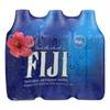 Fiji Natural Artesian Water Case of 4 - 16.9 Fl oz.. HGR 0142380