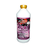 Buried Treasure Acai Complete - 32 fl oz HGR 0210419