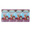 R.W. Knudsen Sensible Sippers - Organic Berry - Case of 5 - 4.23 Fl oz.. HGR 0253815