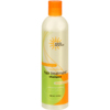 soaps and hand sanitizers: Earth Science - Hair Treatment Shampoo - 12 fl oz