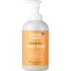CleanWell All-Natural Antibacterial Foaming Hand Wash Orange Vanilla - 9.5 fl oz HGR0341503