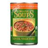 Amy's Organic Lentil Vegetable Soup - Low Sodium - Case of 12 - 14.5 oz. HGR 0359042