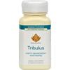 Savesta Tribulus - 60 Vegetarian Capsules HGR 0400630