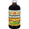 Bernard Jensen Chlorophyll Natural Liquid - 16 fl oz HGR 0523472