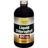Dynamic Health Liquid Chlorophyll - 100 mg - 16 fl oz HGR 0572552