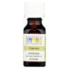 Aura Cacia Essential Solutions Oil Cypress - 0.5 fl oz HGR 0620161