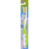 Mouth Watchers Antibacterial Adult Toothbrush Display Case - Green - Case of 20 HGR 0727867
