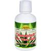 Dynamic Health Liquid Chlorophyll with Aloe Vera Juice Spearmint - 16 fl oz HGR 0785766