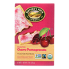 Nature's Path Organic Frosted Toaster Pastries - Cherry Pomegranate - Case of 12 - 11 oz.. HGR 0878900