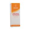 Weleda Calendula Toothpaste - 3.3 fl oz HGR 1136001