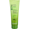 Giovanni Hair Care Products Shampoo - 2Chic Avocado and Olive Oil - 8.5 oz HGR 1179381