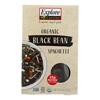 Explore Cuisine Organic Black Bean Spaghetti - Spaghetti - Case of 6 - 8 oz. HGR 1850452