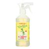 Rebel Green All Purpose Spray - Peppermint Lemon - Case of 4 - 16 fl oz. HGR 1893940