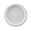 Disposable Plates Plastic Plates: Chinet® Lightweight Plastic Dinnerware