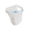 Cardinal Health Belted Shield Undergarment, 30 EA/PK, 4 PK/CS IND 55BLTD430