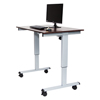 Luxor Electric Standing Desk LUX STANDE-48-AG/DW