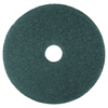 Floor Care Equipment: Blue Cleaner Pads 5300