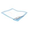 Medtronic Simplicity™ Extra Undrpad 23 x 24, 200/CS MON 10383100