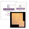 Gentell Calcium Alginate Dressing Gentell 2 x 2 Square Calcium Alginate Sterile MON 13202100
