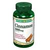 OTC Meds: US Nutrition - Cinnamon Supplement Capsule 1000 mg, 100 per Bottle