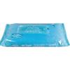 PDI Personal Wipe Hygea Soft Pack Aloe 48 per Pack MON 22751100